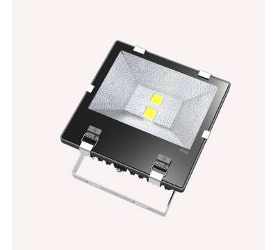 Led Bouwlamp 100 Watt 2016
